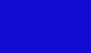 Logo Syndicat National du Jeu Vidéo